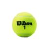 Kép 2/3 - Wilson Championship (4 db/tubus) teniszlabda