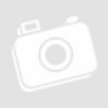 Wilson Pro Staff RF 97 fekete teniszütő